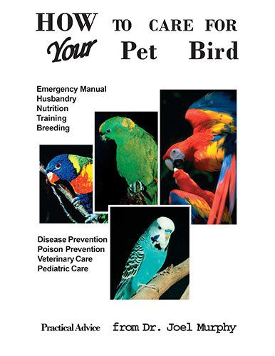 How to Care for Your Pet Bird Ebook