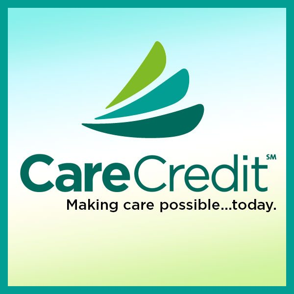 Palm Harbor Vet Accepts CareCredit for Veterinary Services